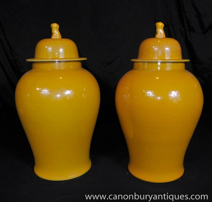 Paar chinesische Keramik Ingwer-Gläser Vasen Urnen Foo Dogs Porzellan