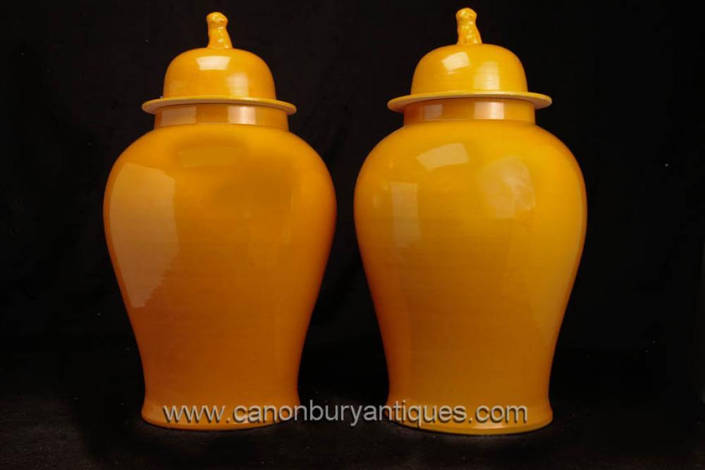 Pair Chinese Pottery Ingwer-Gläser Vasen Urnen Foo Dogs Porzellan