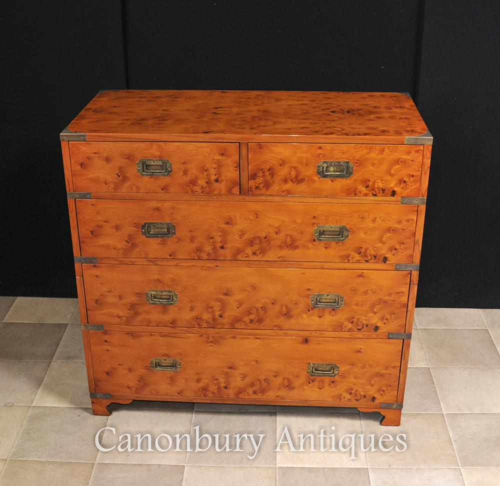 Englisch Kampagne Kommode Schubladen Kabinett Satinwood Colonial Möbel