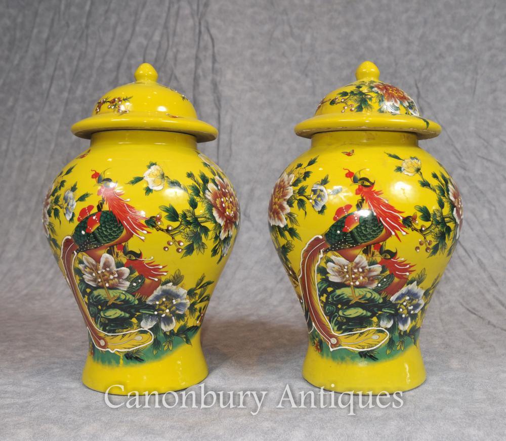 Paar Chinesisch Ming Porzellan Ingwer Urns Tempel Gläser Vögel des Paradieses